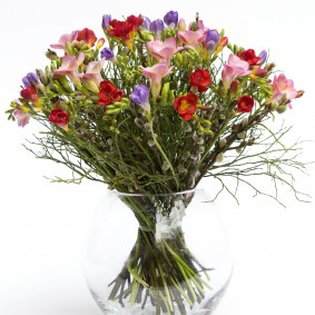 Spring Freesia Bouquet