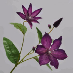 Clematis Spray - Purple