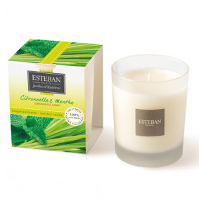 Scented Candle - Citronelle & Menthe