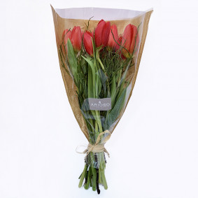 Single color tulip bouquet in various colors