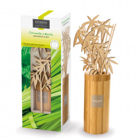 Esteban Bamboo scented bouquet with scented refill