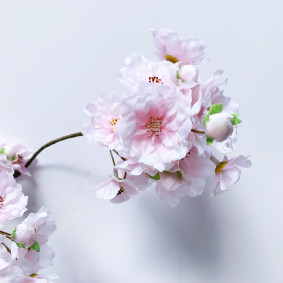 Cherry Blossom bunch - light pink