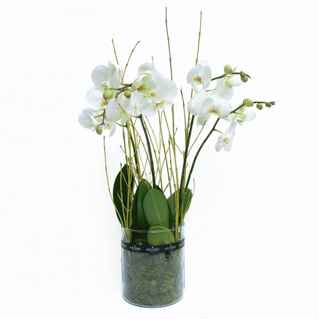 Dreamy white orchid arrangement in glass pot
